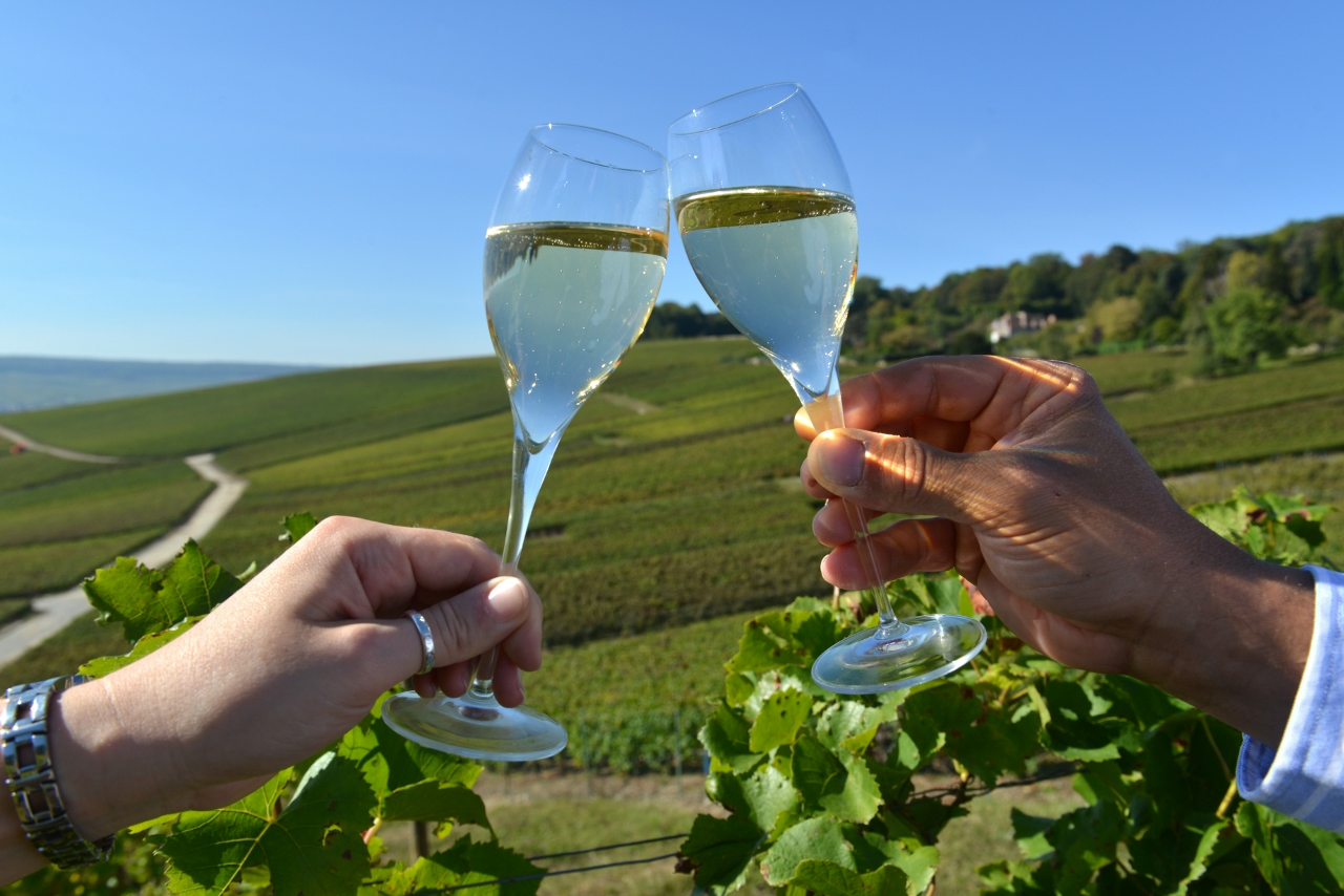 Image result for reims champagne