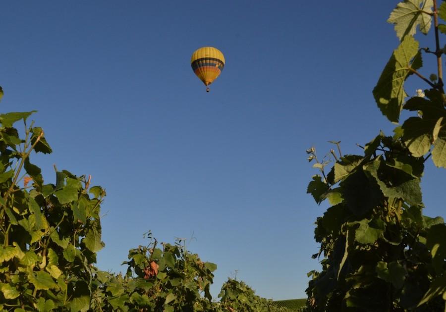 Air Ballon ride vineyards Champagne Tour Montgolfière