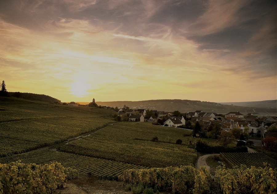 Champagne country village Grand Cru visite tour