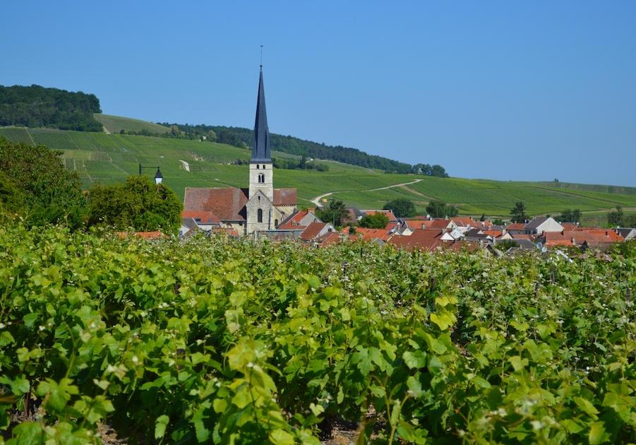 Village Champagne Tour visit vineyards vignoble